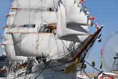 日本丸~総帆展帆2