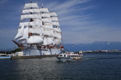 きれいな帆船海王丸