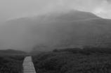 白山への道