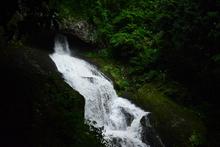 森の奥の珍しい滝