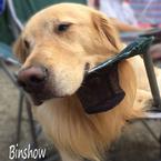 Binshow