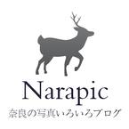 Narapic