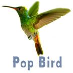 PopBird