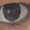 独眼流さくら