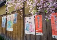 京都 春の踊りが順調に開催されますように~