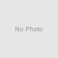 小倉城の春