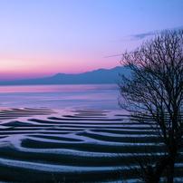 有明海 冬の干潟