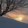 雪に暮れる
