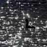 水上の星②