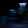 夜のノラ歩き...