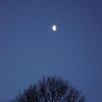 夜の風景シリーズ