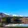 青木湖畔の一本桜