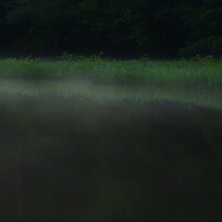水辺の魔術 4