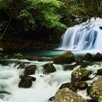 夏の蓼科大滝
