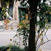 恵比寿の自転車 その2