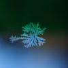 雪祭り 冬の風景 他