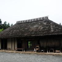 2011年大和 泉の森