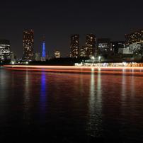 Tokyo Night Sight