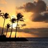 HAWAII出張
