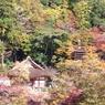 2011秋 談山神社遠景。