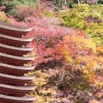 秋 ~談山神社~