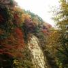 養老渓谷(紅葉)No.2