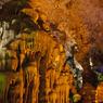 ティエンクン洞窟8
