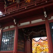 秋の本土寺