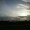 オランダの大地と空を隔てる木