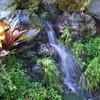 water fallen