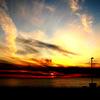SunsetLive