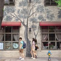 Seoul Snap