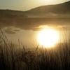 朝暉の湿原(ちょうきのしつげん)