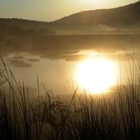 魅惑の霧ヶ峰(八島ケ原湿原、車山湿原)