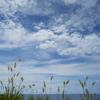 九月の海と空