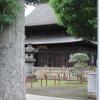 正福寺と大木