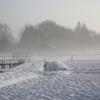 朝の雪煙(2)