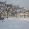 朝の雪煙(3)