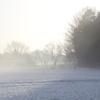 朝の雪煙(4)