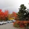 紅葉と虹と。