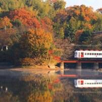 貴志川線秋景色