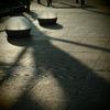 20090823青葉公園3