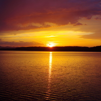 黄金の網走湖2013