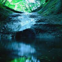 DSC_0203 名もなき滝、静寂なる滝壺・・・・・