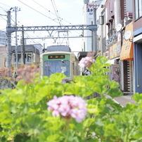 都電荒川線 三ノ輪橋駅にて