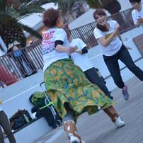 Capoeira ~素晴らしい人と人との舞~
