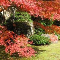嵐山大河内荘、紅葉の旅