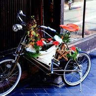 素敵な自転車♪