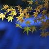 小京都の秋