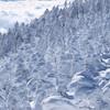 冬の北横岳にて(Scene20/40)